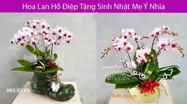 Hoa tang sinh nhat me