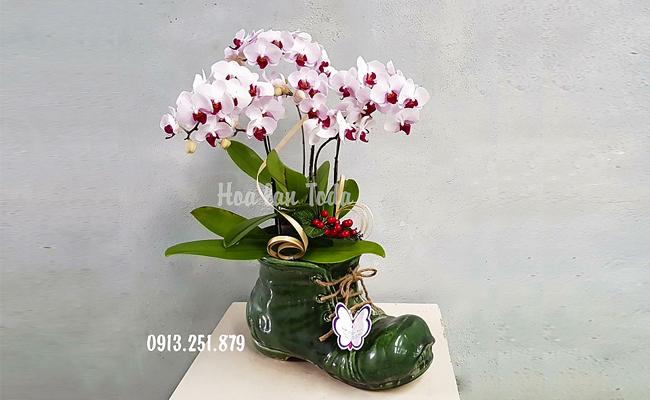 hoa tang ban gai ngay 20 -10